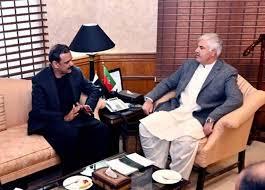 وزیر اعلیٰ خیبر پختونخوا سے عاصم سلیم باجوہ کی ملاقات، تبادلہ خیال