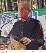 بھارت مقبوضہ کشمیر میں انسانی حقوق کی خلاف ورزی بند کرے:شاہ محمود قریشی