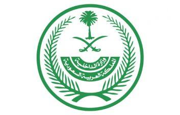 حوثیوں کے مسلسل حملے خطے کے لیے خطرہ ہیں ،عرب وزرائے داخلہ کونسل