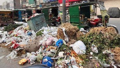 لاہور میں گندگی کے ڈھیر، عدالت نے پنجاب حکومت سمیت فریقین کو نوٹسز جاری کر دئیے